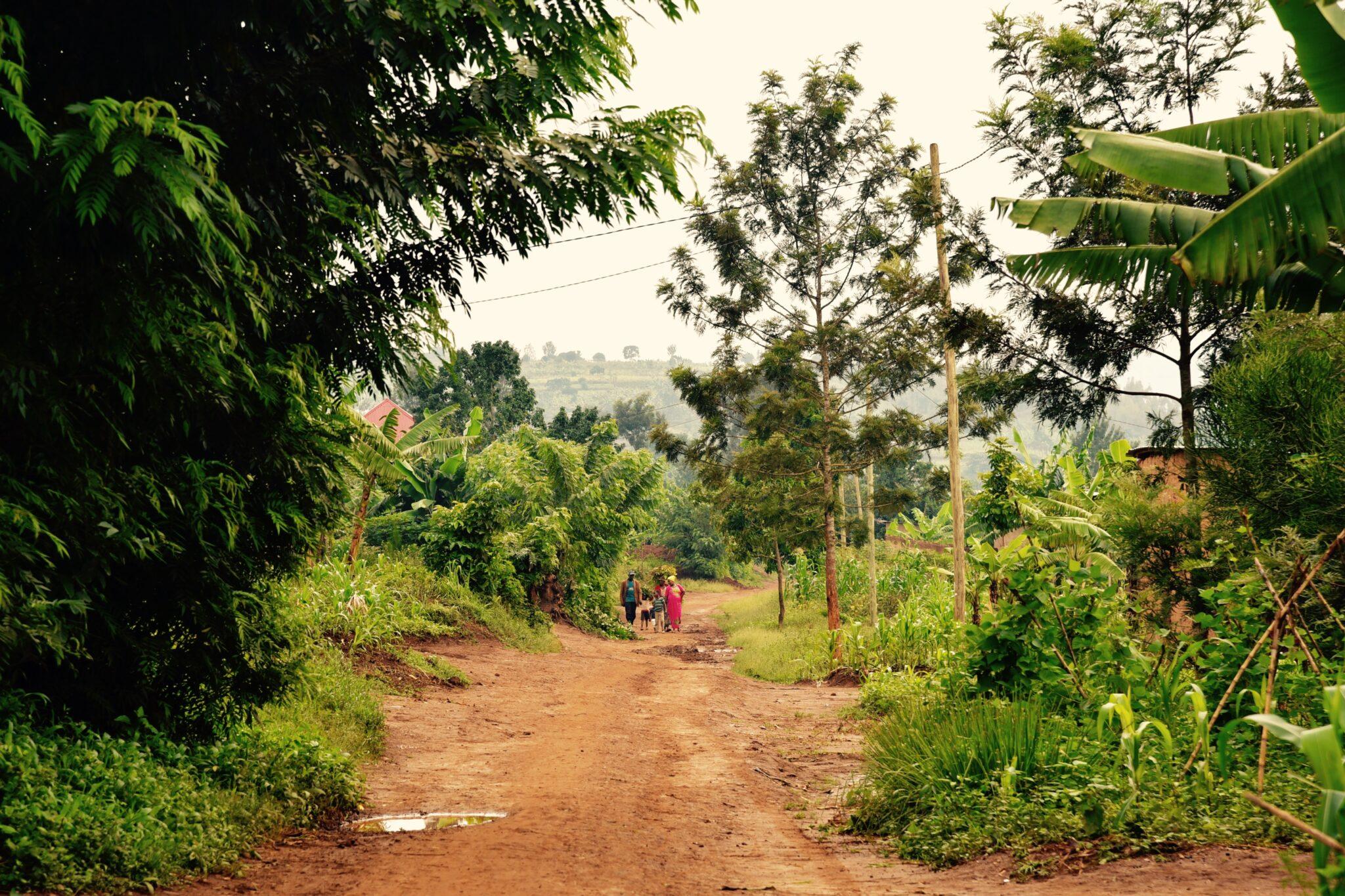 Im Bild: Ruanda